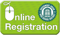Green Online Registration Button